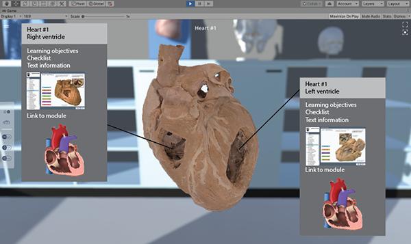 VanVR App heart